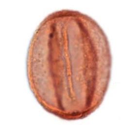 Quercoidite pollen grain (Miocene) From Taylor et al, 2009.